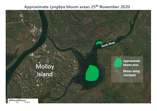 Map image of algal bloom in the Scott River basin