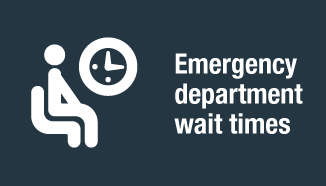 Link to emergency department wait times