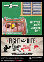 Poster: fight the bite indigenous communities 4