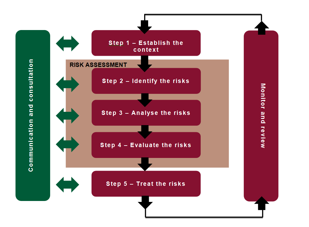 diagram outlining the clinical risk management process